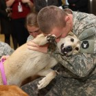 A Memorial Day Tribute for Soldiers and Dogs Alike
