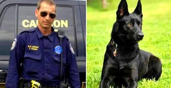 5.27.15 - K-9 Saves Partner from Being Murdered in the Woods1