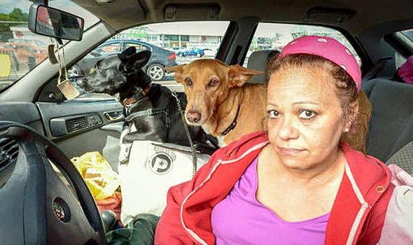 5.30.15 - Teacher Chooses to Live in Car Rather Than Give Up Dogs2