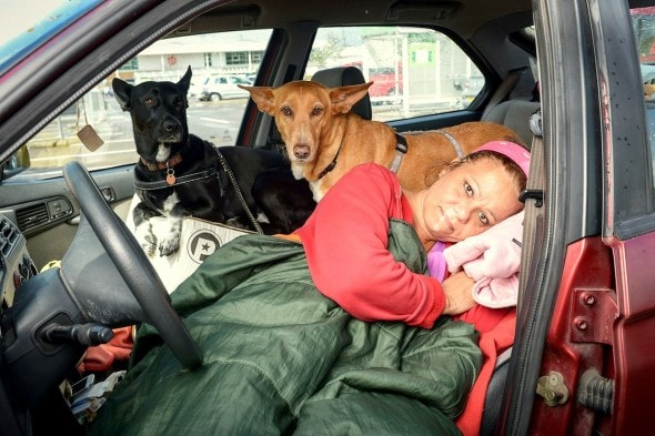 5.30.15 - Teacher Chooses to Live in Car Rather Than Give Up Dogs4