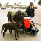 Three Dogs and Their Homeless Owner Hope for a Better Day