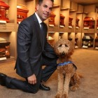 White Plains Funeral Home Gets Comfort Dog