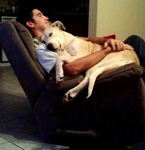6.21.15 - Dog Dads12