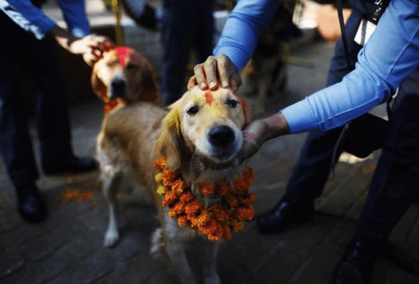 6.30.15 - nepal fest1