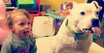 13 Ways Raising Kids and Dogs Is Exactly the Same