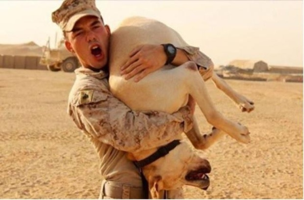 Answered Prayers for Marine Reunited With Service Dog