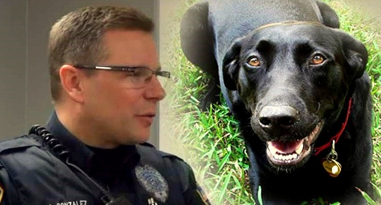 Adopted Dog Alerts Police Officer & Saves Owner's Life