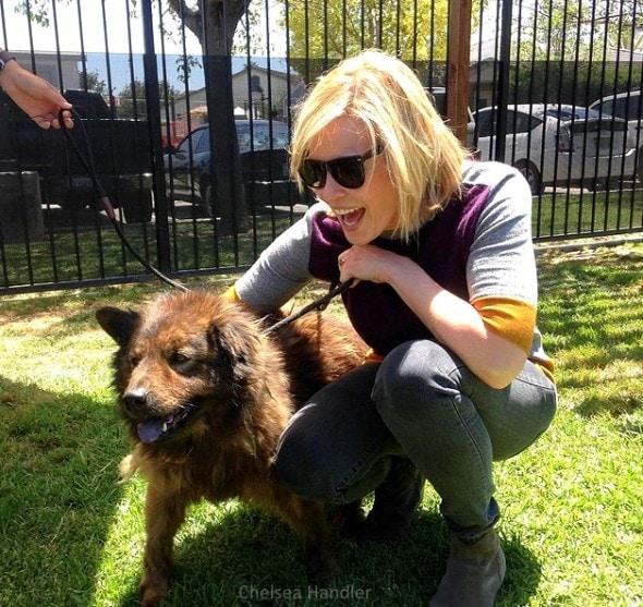7.18.15 - Chelsea Handler Adopts New Dog0