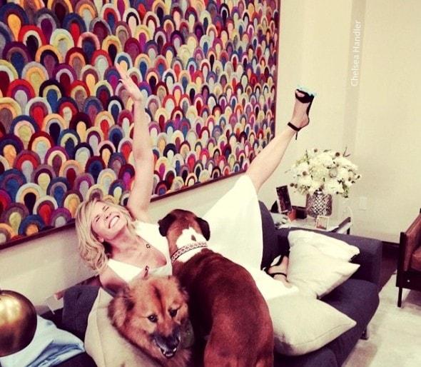 7.18.15 - Chelsea Handler Adopts New Dog7