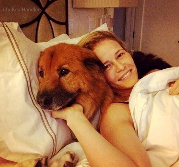 7.18.15 - Chelsea Handler Adopts New Dog9