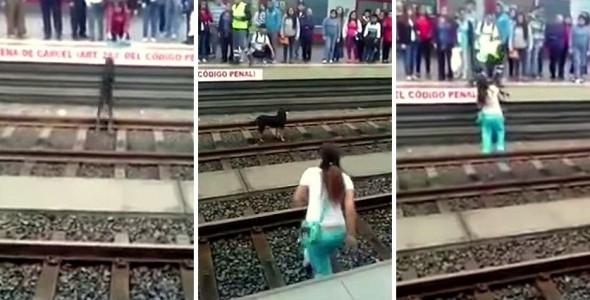 7.2.15 - Woman Saves Dog on Tracks