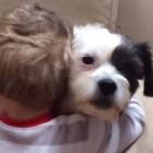 7.20.15 - boy hugs dog