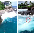 Amazing Rescue of Dog Swept Away by Monstrous Wave