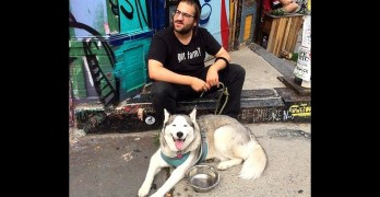 Meet Brooklyn's Fearless Hasidic Dog Walker