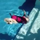 Dogs + Water = Fun