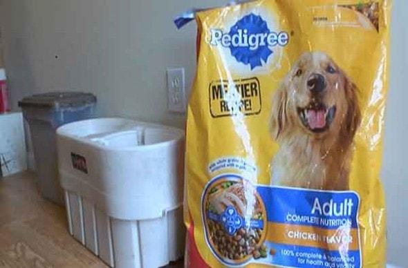 8.18.15 - dog food2