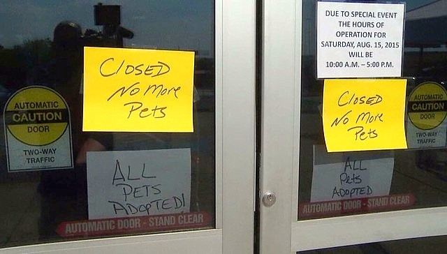 Animal Shelter Closes for the Best Reason Ever