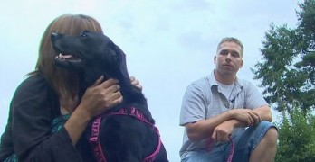 Dog Lost in Motel 6 Explosion Reunited with Family
