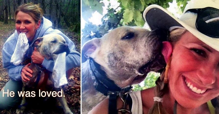 Dog Rescued During Hurricane Katrina Finally Gets Home