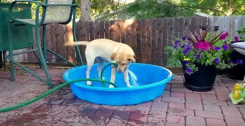 Maddie Fills Up Her Own Pool