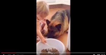 Toddler Spoon Feeds Her Dog