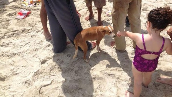 A child point to Chiquitica after arriving on Miami Beach.