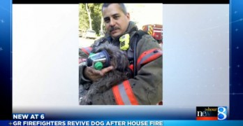 "Firefighters to the ""Dog"" Rescue!"
