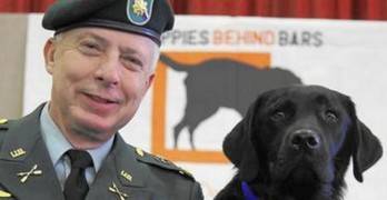 Vet and Service Dog Get Apology from Restaurant
