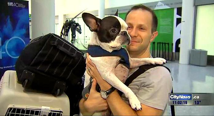 International Flight Diverted by Pilot to Save Dog