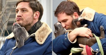 Tom Hardy's Dogs Are His Inspiration