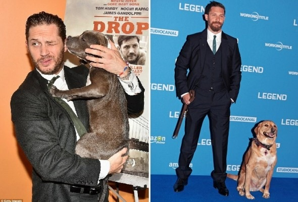 9.17.15 - Tom Hardy Dog6
