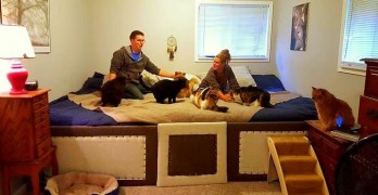 Couple Creates 11-Foot Bed for Whole Family