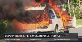 Officer Saves Dog from Burning Vehicle in Virginia