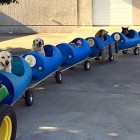 Retiree Builds Train to Entertain Bored & Lonely Shelter Dogs