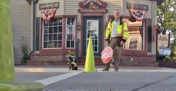 "Dog ""Fired"" from Crossing Guard Job Finds New Employment"