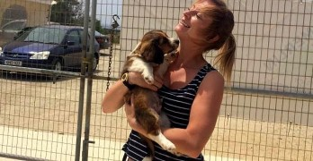 Woman Spends Vacation Working at Cyprus Shelter