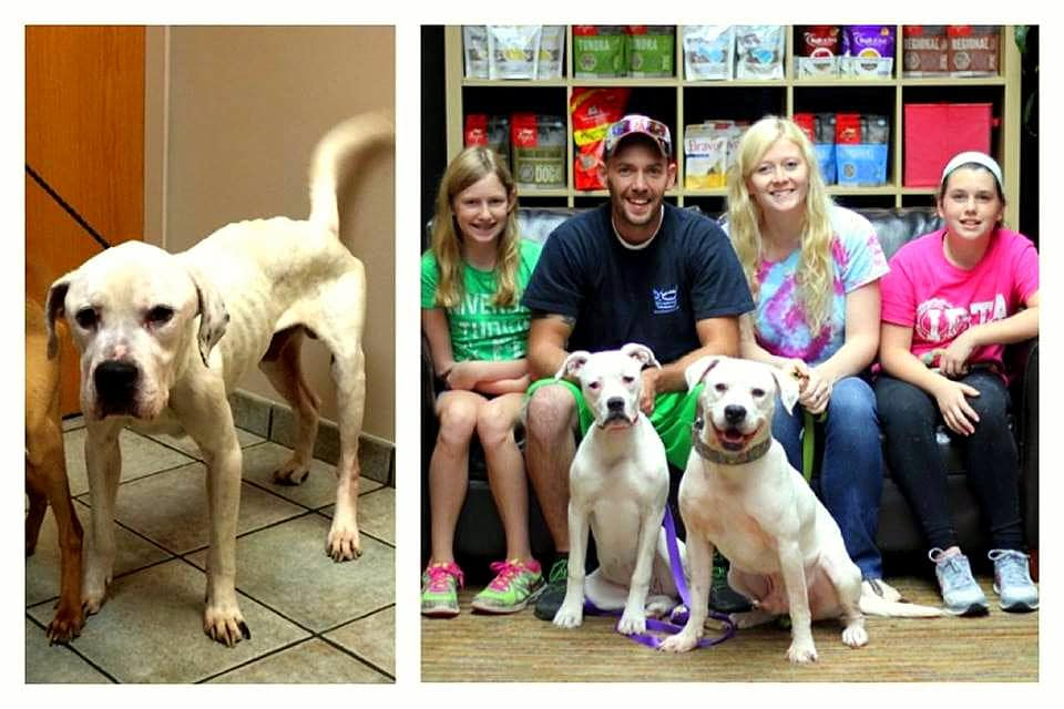 UPDATE: Oscar Is Adopted!