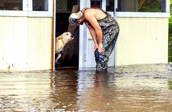 10.10.15 - Man Rescues & Adopts Dog Heartlessly Abandoned During Flood1