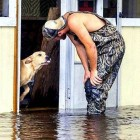 Man Rescues & Adopts Dog Heartlessly Abandoned During Flood