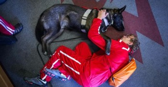 Autistic Boy and His Dog are Special Cross Country Race Team