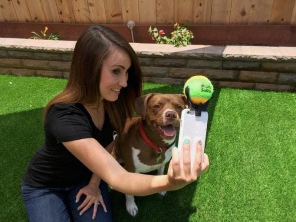 10.22.15 - dog selfie1