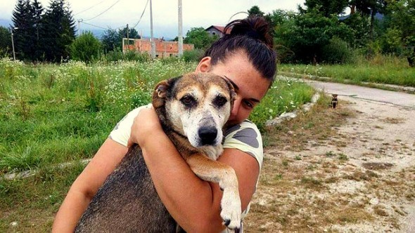 10.25.15 - The Amazing Rescue of a Bosnian Street Dog and Her Puppies4