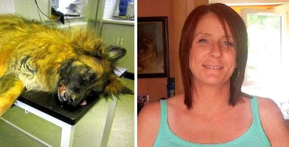 10.28.15 - Woman Who Let Dog Suffer for Months Given Lifelong Ban on Pets3
