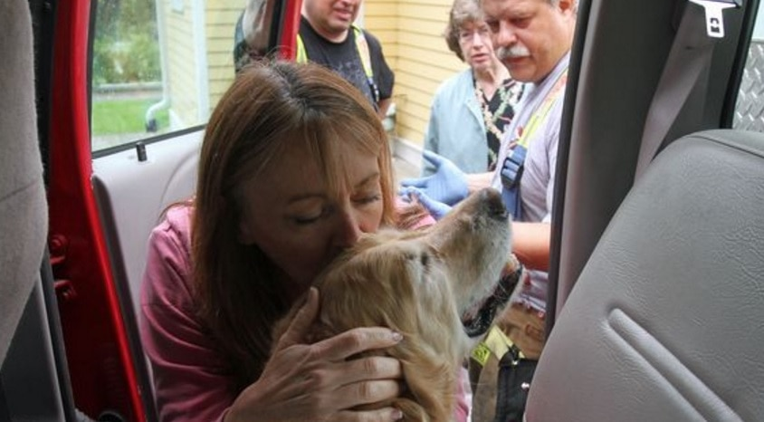 UPDATE: Woman Reunites with Dog That Jumped in Front of Bus to Save Her