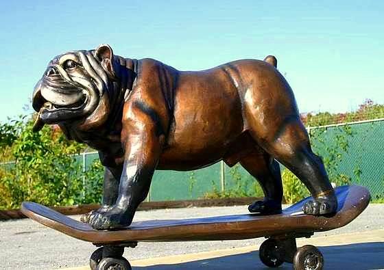 10.29.15 - Skateboarding Dog Tillman Dies2