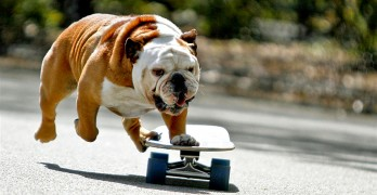 The World Says Goodbye to Skateboarding Sensation Tillman
