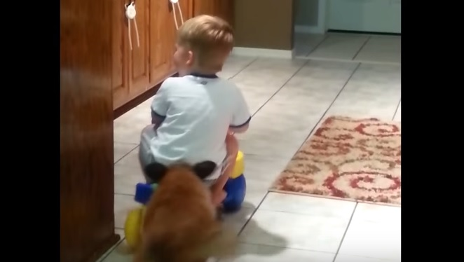 Dog Plays Fetch with Little Boy on a toy Car in the Kitchen