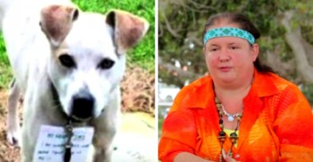 Disabled Homeless Woman Walks All Night in the Rain to Save Abandoned Dog