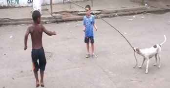 Dog Plays Jump Rope with Kids