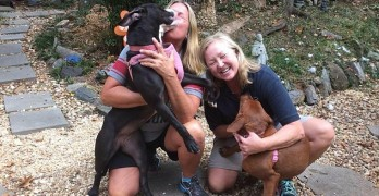 Hugging Dogs Saved by Social Media Find Forever Home